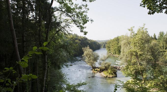 Suche nach Asylbewerber in Reuss bislang erfolglos.